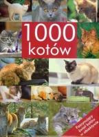 1000_kotow